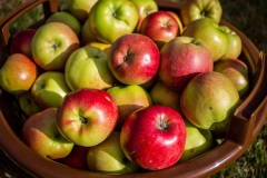 sonjahwolf / Äpfel