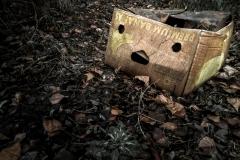 dotmatchbox / Die erschrockene Box (Sananab Muimerp)