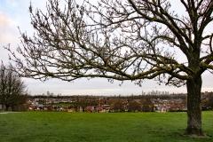 ollo / Blick auf die City von Blythe Hill in London