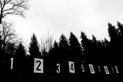 schneehaesli / 1,2,3,4,5,6,7,8,9,10,...