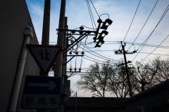 ollo / Stromkabel und  Bäume über den Hutongs von Beijing