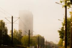 danny / Im Nebel