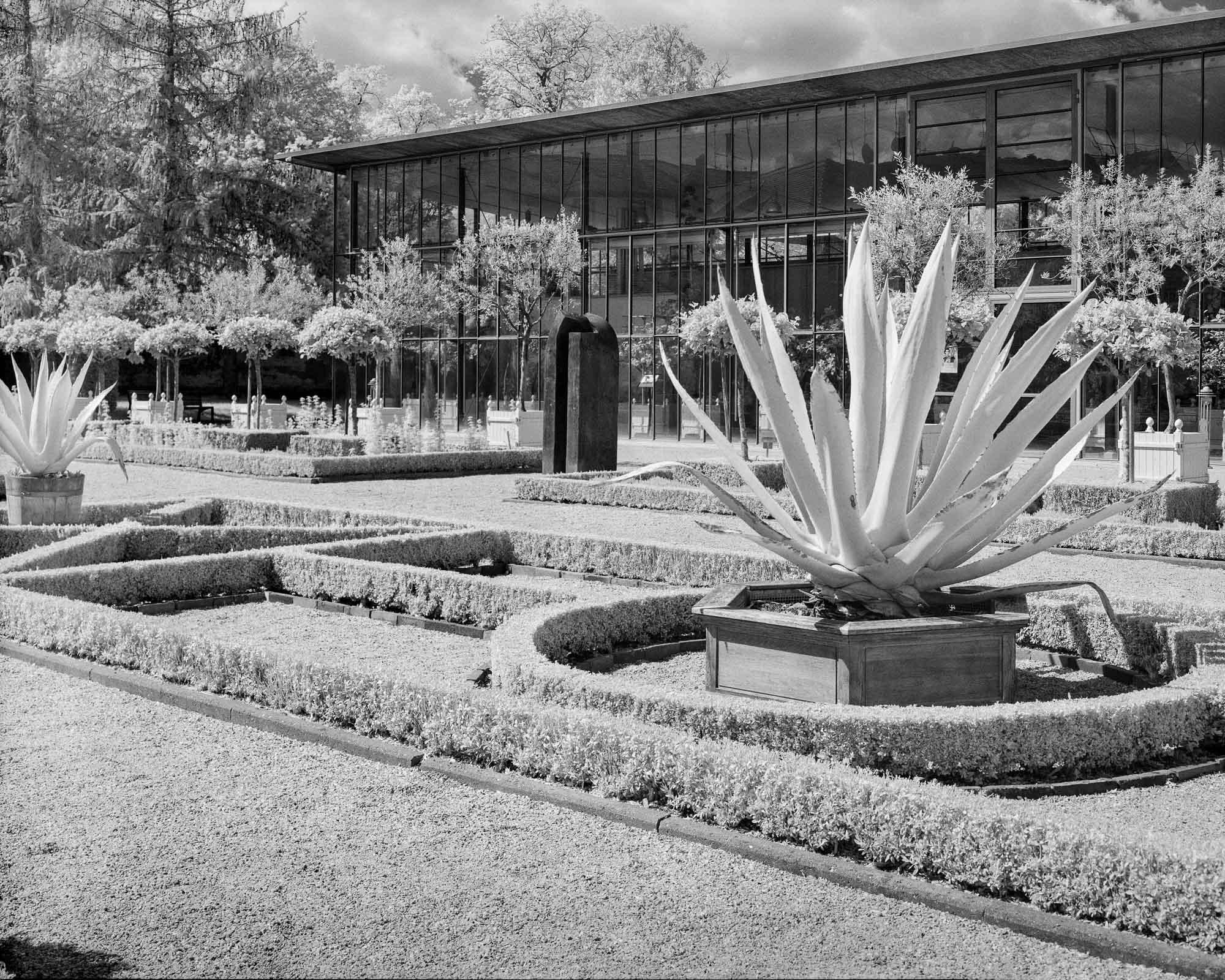 Cthulhusnet / Leonhart-Fuchs-Garten in IR