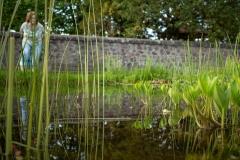 babblfisch / das Schweigen des grünen Minnesängers