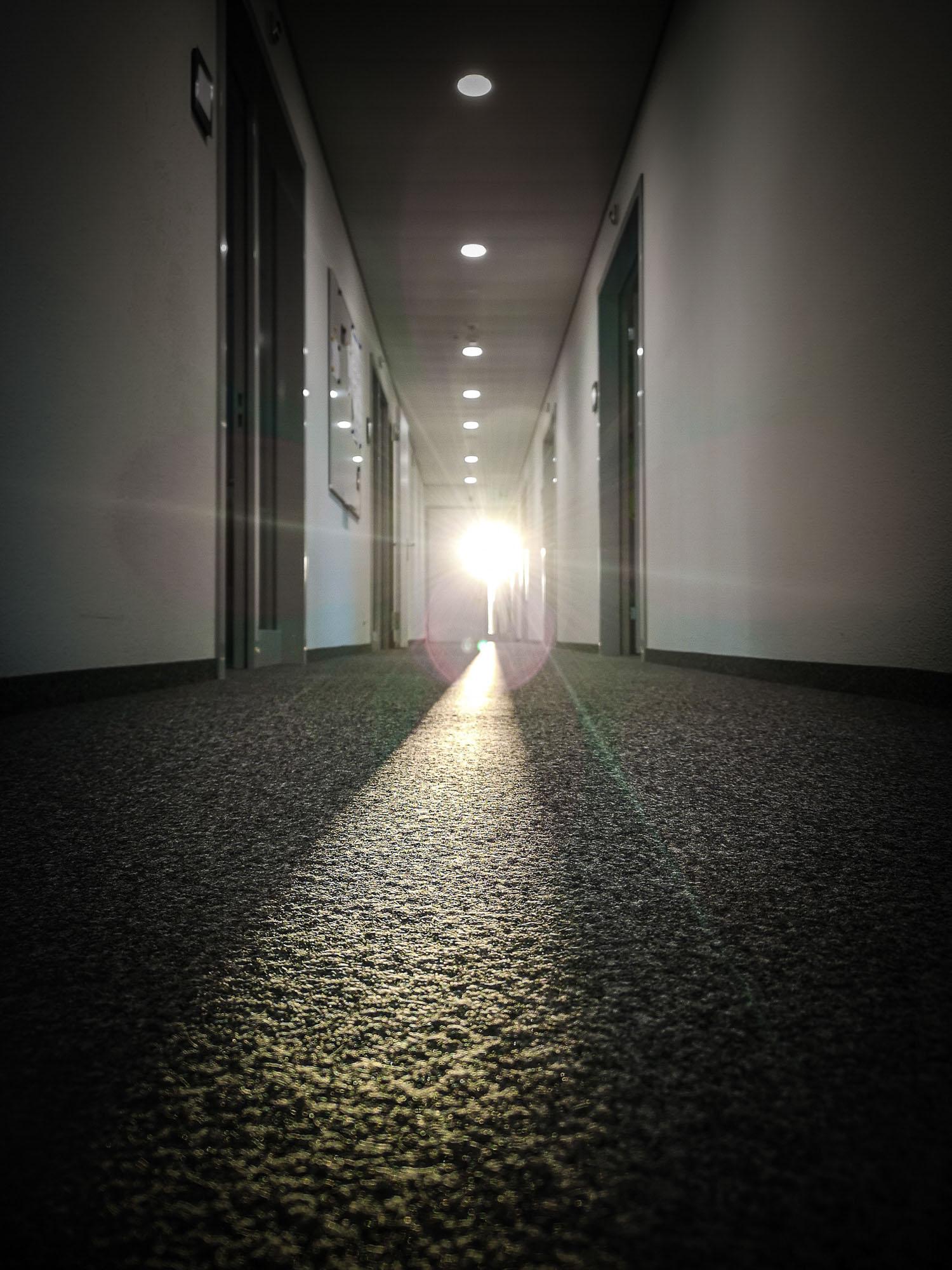 schneehaesli / Lass Die Sonne Rein