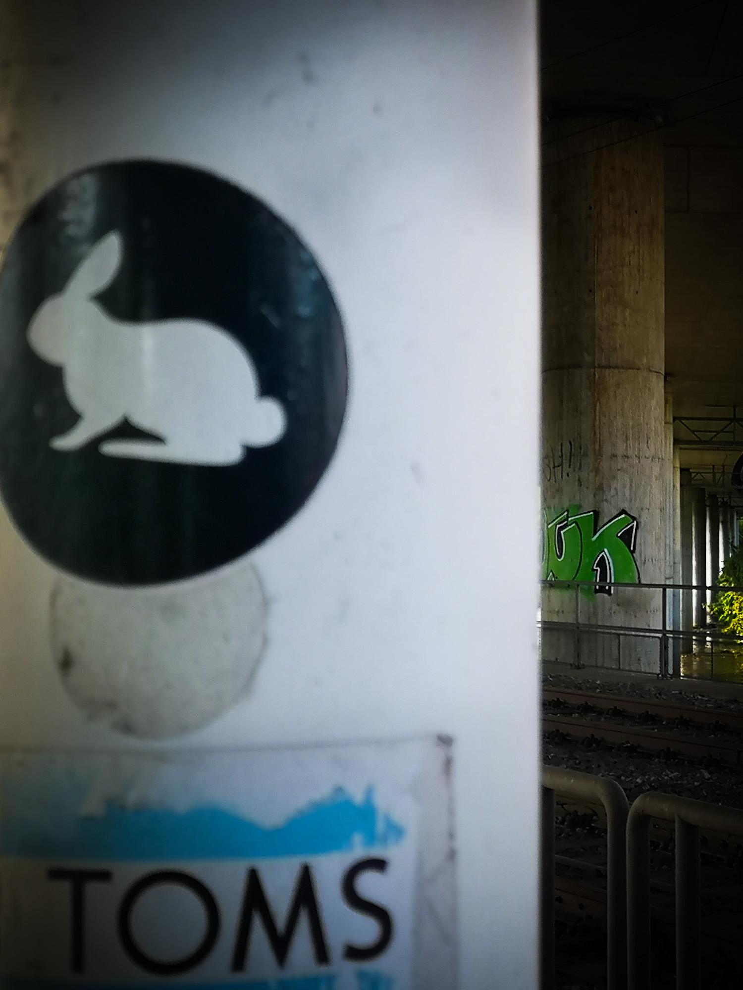 schneehaesli / Under the Bridge