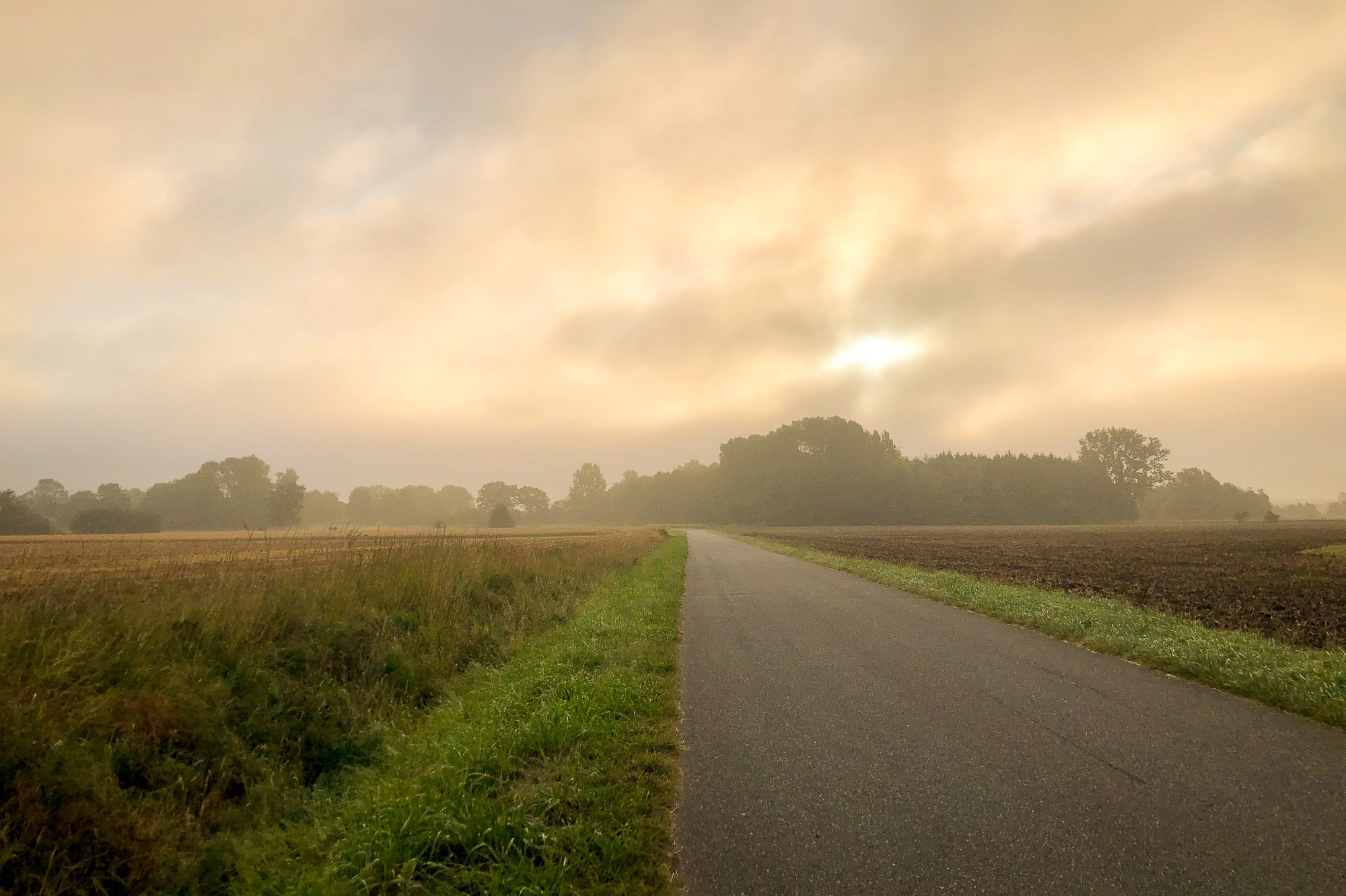 mehrlachen/Morgenlauf