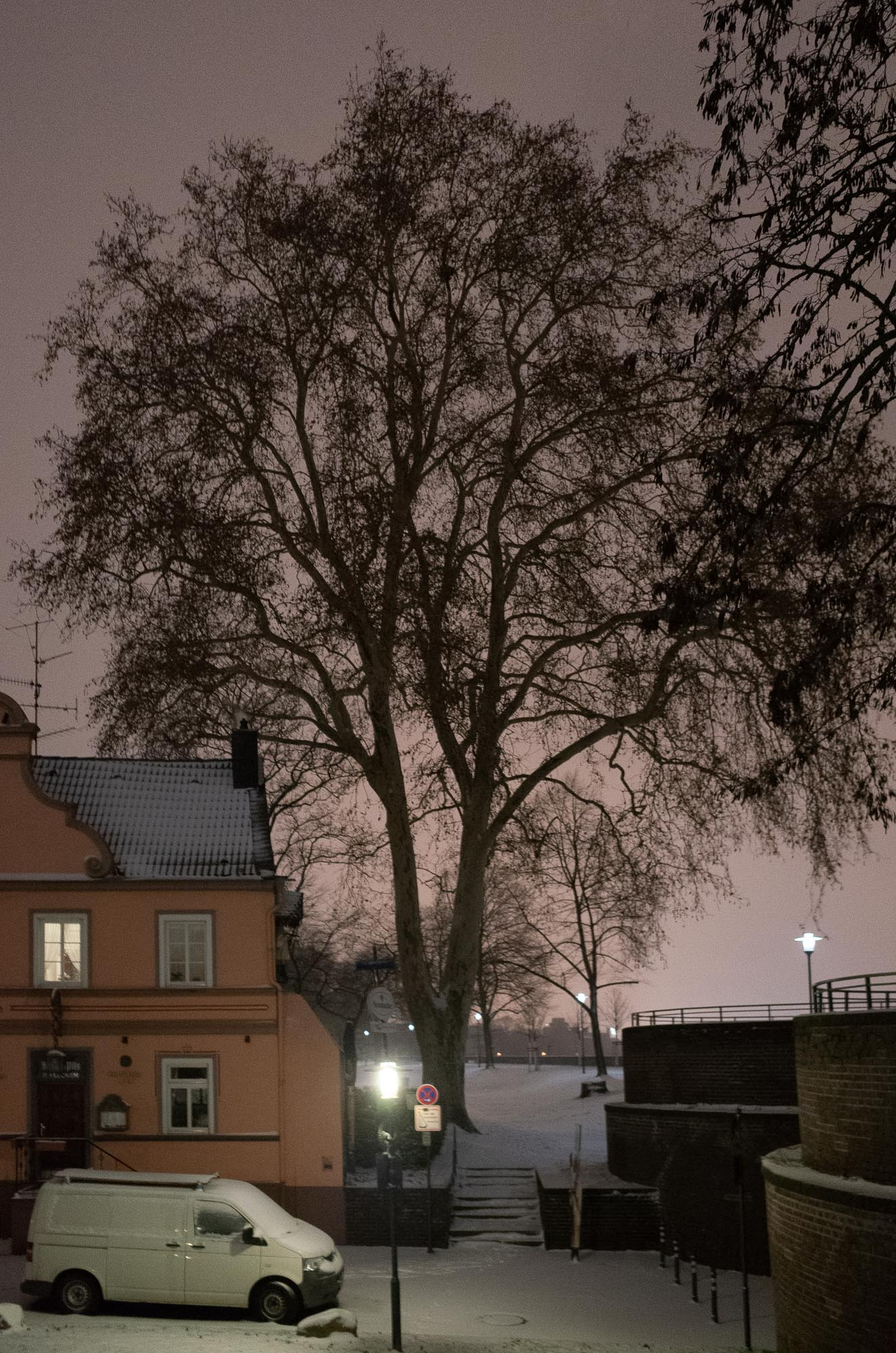 ollo / Schneeweiß