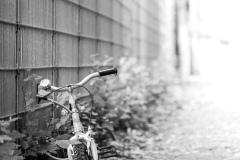 dotmatchbox / the bike