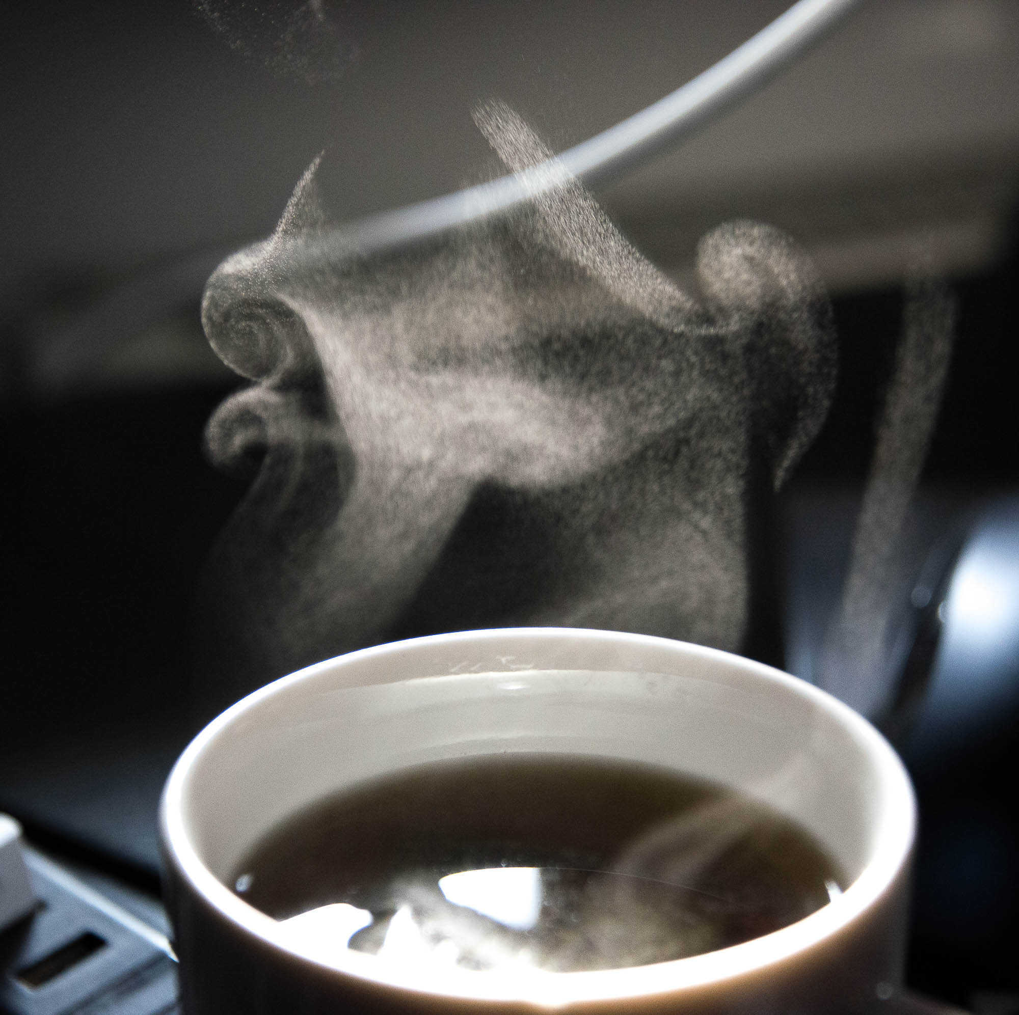 Lumivers / Tee