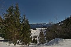 hermancheruscer / Winterspaziergang
