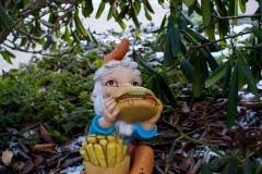 sonjahwolf / Auch Zwerge haben Hunger