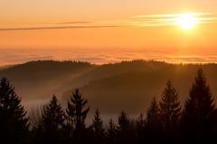 Panoramablick im Bayrischen Wald