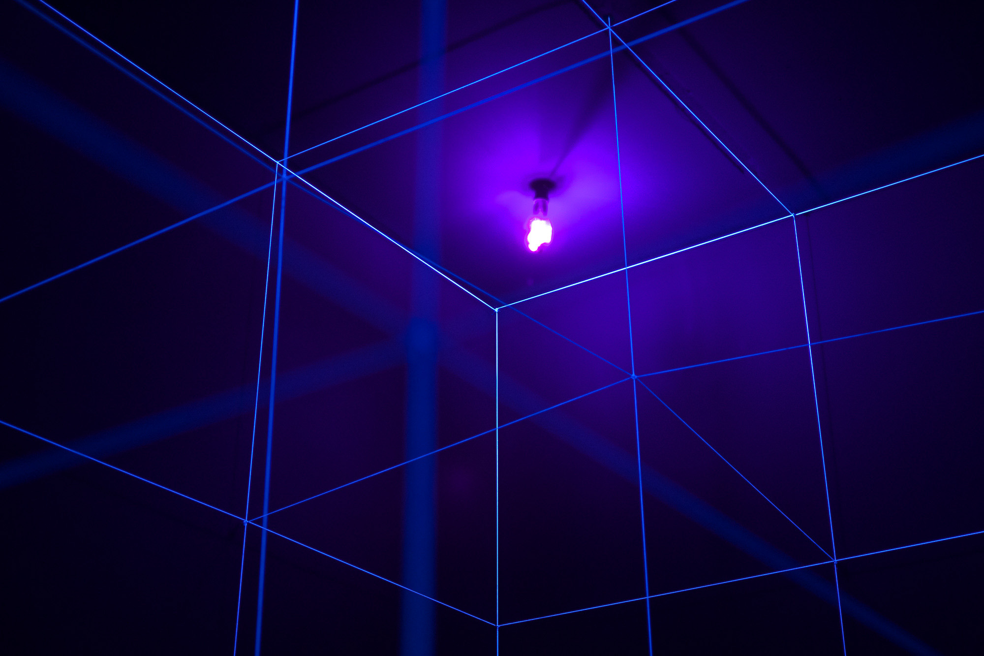 Lamp & Lines