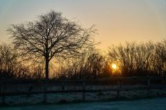 schoener kalter Morgen