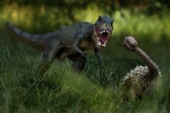 T-Rex vs Ankylosaurus