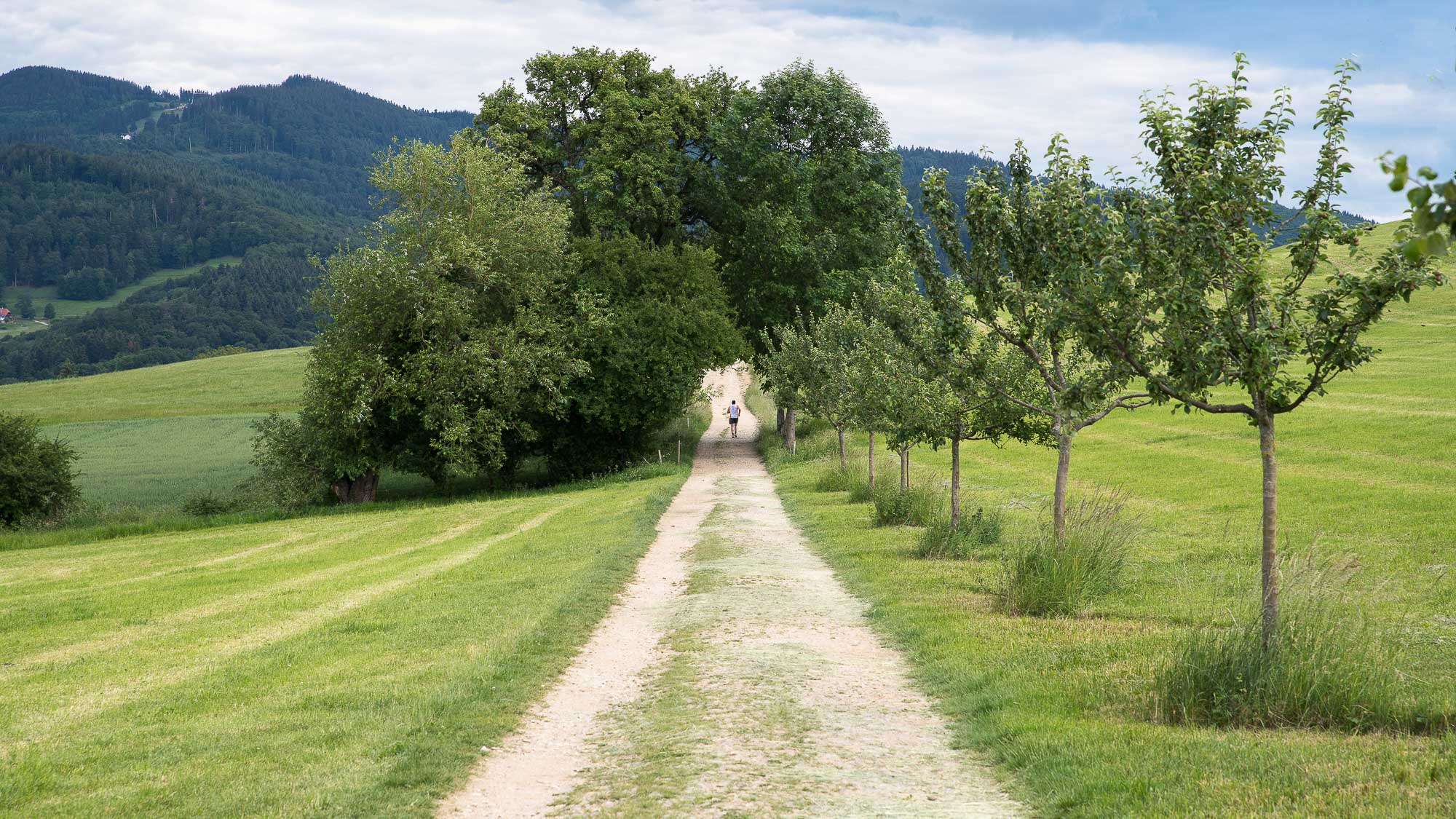 Der Weg ins Hexental