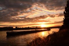 geparktes Schiff im Rhein mit Mainz im Hintergrund