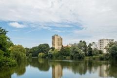Eine Oase mitten in Berlin