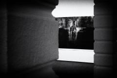 Lurking behind the Columns