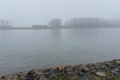 Rheinkilometer 706 im Nebel