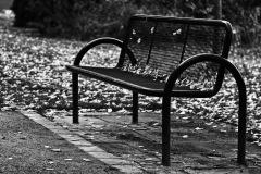 Einsam im Herbst