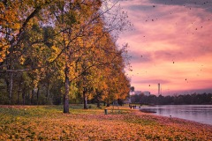 Herbst in Bremen