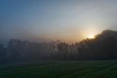 Morgendunst
