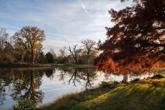 brennender Herbst