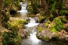 auf dem Weg zu den Wasserfällen von Bad Urach - leider kein Stativ dabei