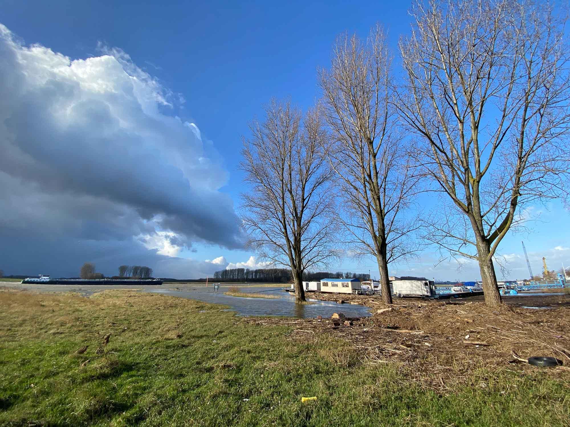 Rheinkilometer 706 nach Sabine