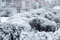Wintereinbruch am Donnerstag Abend