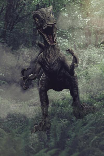Raptor im Wald