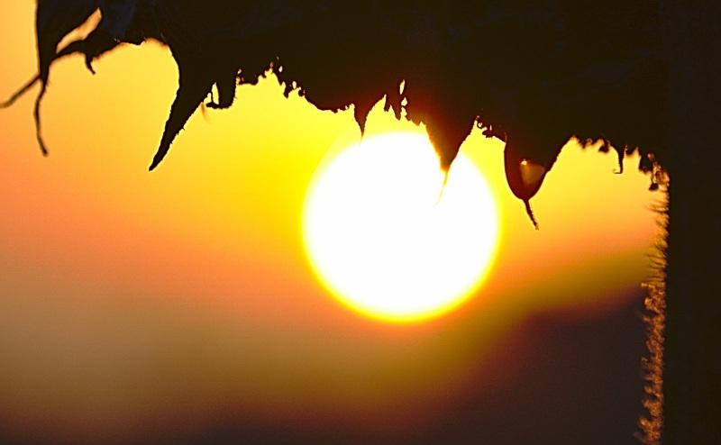 Sonnentiefstand