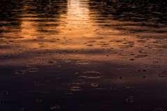Regen im Sonnenuntergang