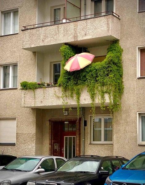 Dornröschens Wohnung