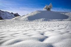 Schneemeer