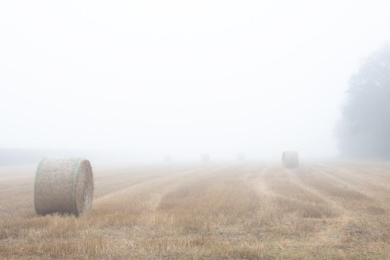 Nebel-Malefiz