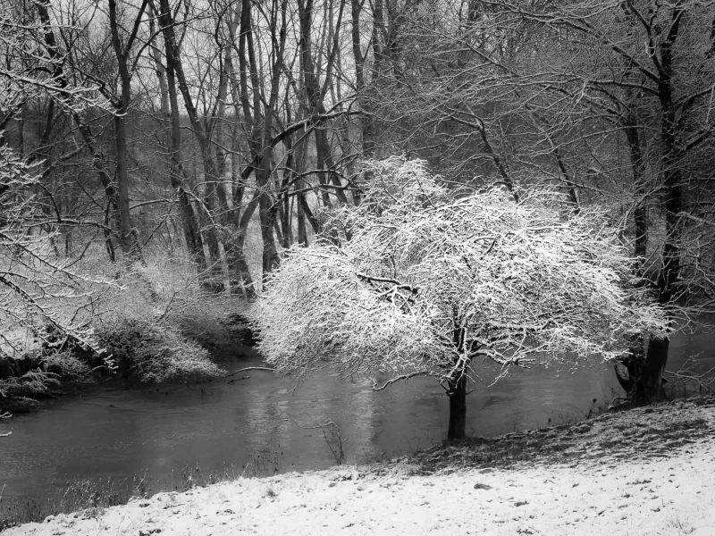 Erster Schnee am Bach