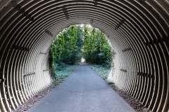 Deepixt61 / Tunnel