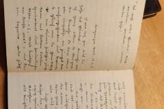 Lilli's Tagebuch 1912