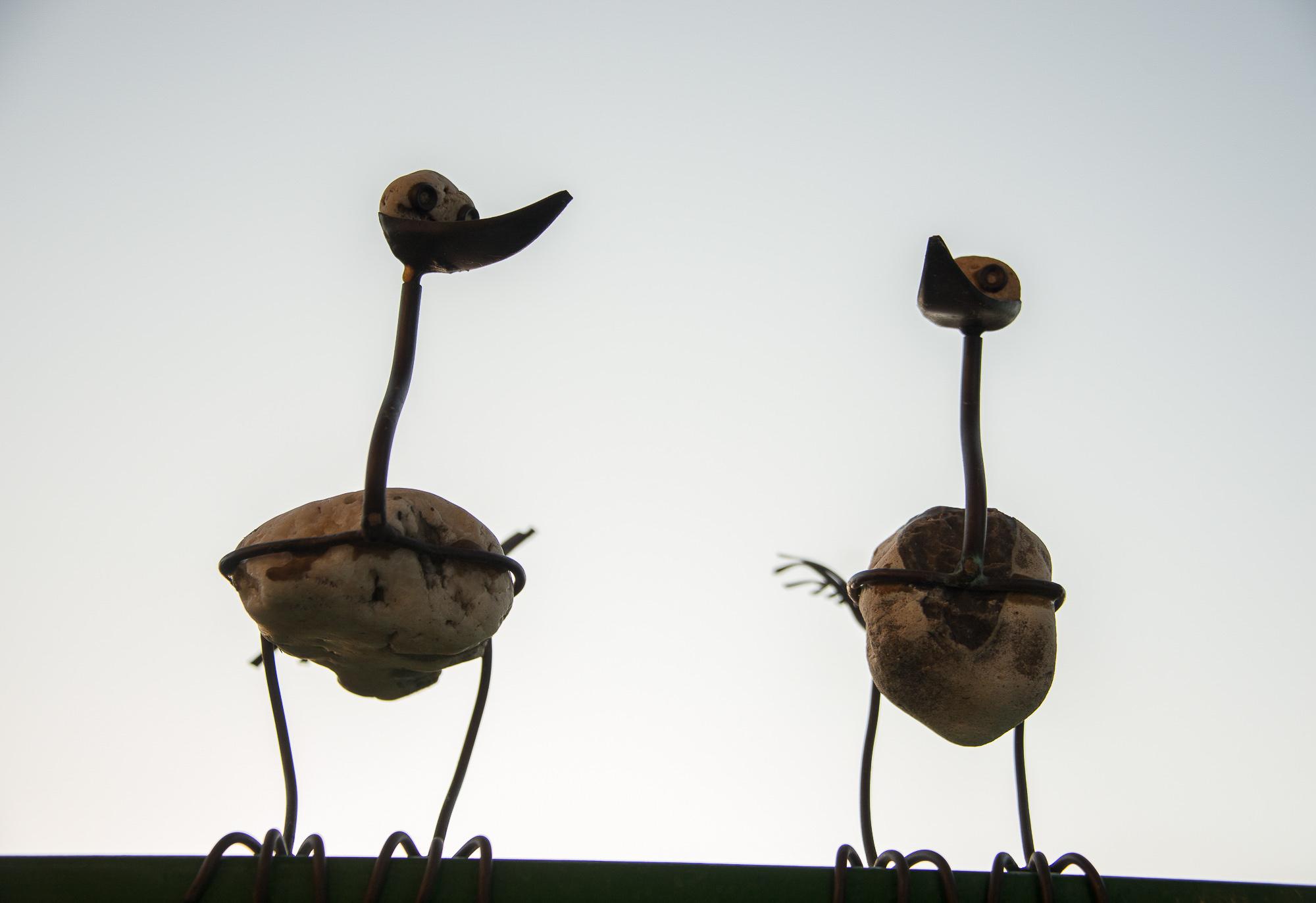 Lumivers / komische Vögel...