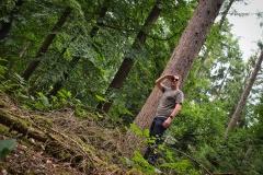 den Wald vor lauter Bäumen nicht sehen