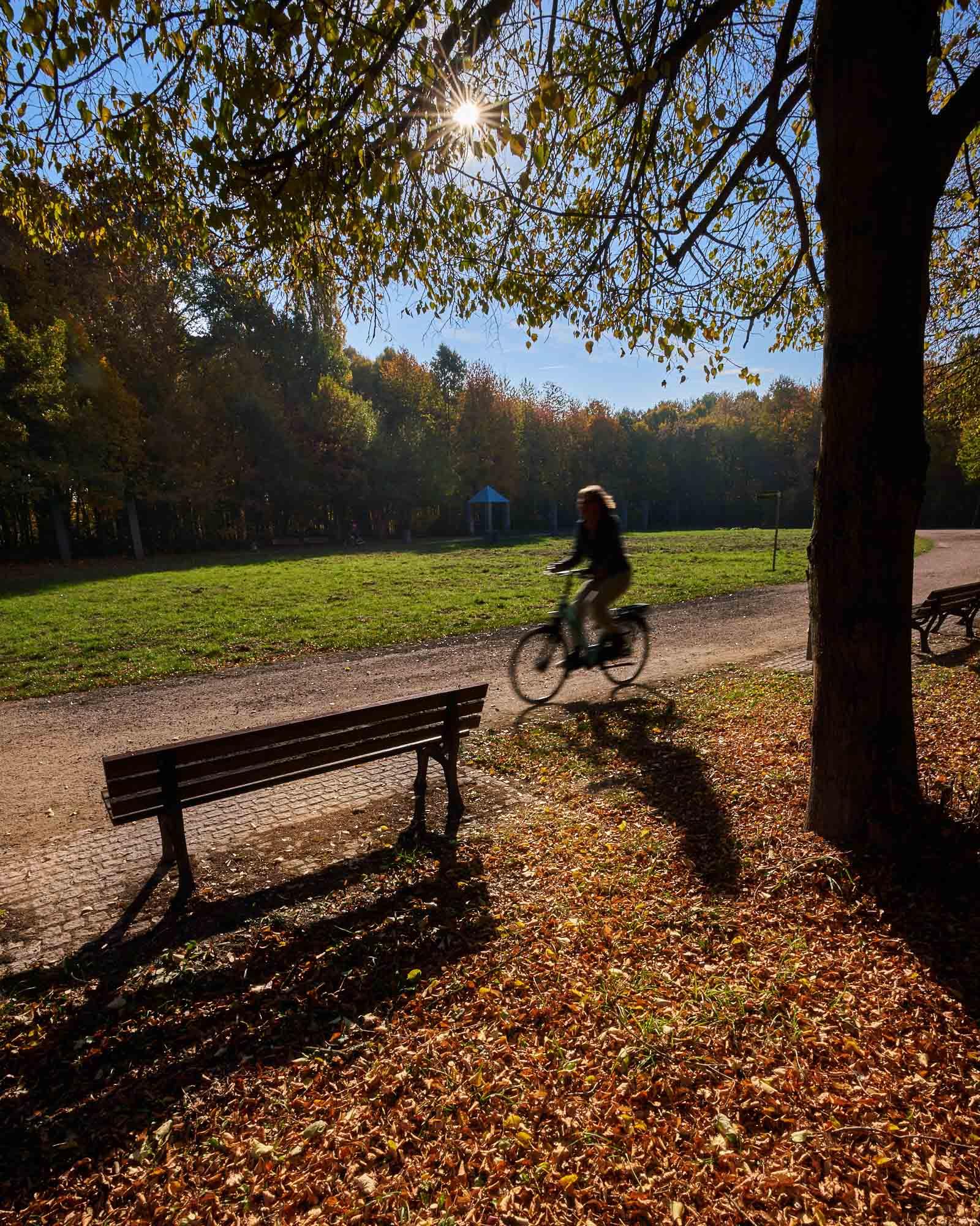 expresskasse / Goldener Herbst
