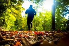 schneehaesli / Herbstjogging