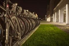 Grüne Mobilität in Reih und Glied