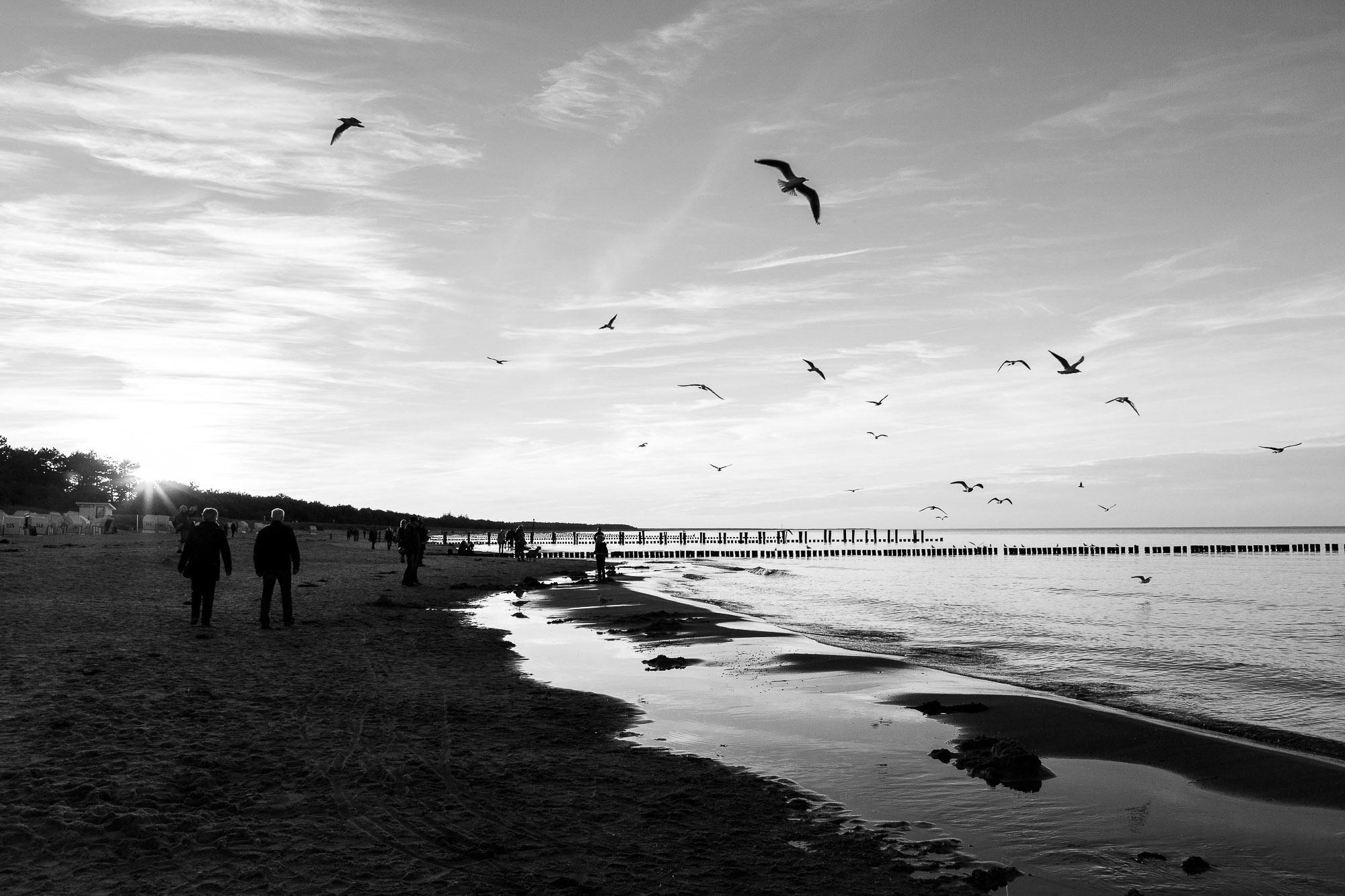 dagmar/ abends am Strand