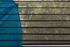 dagmar/ Regen-gestreift-(k)ein Schirm