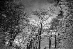 phonsography / Nach dem Regen