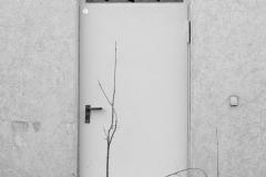 fotoLise / weiße Tür